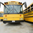 Stock Photo: School Buses