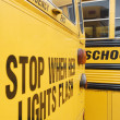 Stop When Red Lights Flash on School Bus — Stock Photo #21831489