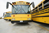 Autobus scolaires — Photo