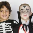 Boys Dressed In Halloween Costumes — Stock Photo #21866377