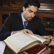 Advocate Reading Law Book — Stock Photo
