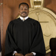 Judge Standing In Courtroom — Stock Photo #21861921
