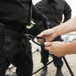 Stock Photo: SWAT Team With Climbing Equipment