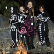 Kids In Halloween costumes Cooking Marshmallows On Campfire - Stock Photo