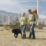 Senior Couple Walking With Dog Near Wind Farm — Stock Photo #21870825