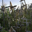 Wooden Crosses At Lithuanian Graveyard — Stock Photo
