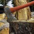 Axe wedged into tree stump - Stock Photo