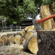 Stock Photo: Axe in tree stump
