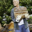 Stock Photo: Senior mcarrying firewood logs