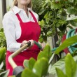 Stock Photo: Portrait of senior female gardener spraying pesticide on plants in botanical garden