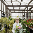 Stock Photo: Portrait of a happy gardener holding pot plant in greenhouse