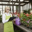 Senior florist using tablet pc in greenhouse — Stock Photo