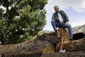 Nízký úhel pohledu člověka sedí na ohromný kmen stromu — Stock fotografie
