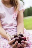 Close-up of hands full with bing cherries — Stock Photo