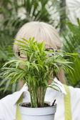 макро горшок растений перед старшим женское лицо — Стоковое фото