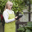 Senior gardener using digital tablet in garden center — Stock Photo