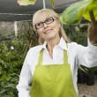 Happy senior woman gardener standing in greenhouse while looking away - Stock Photo