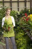 Ritratto di una giovane donna felice in piedi con pianta in vaso in serra — Foto Stock