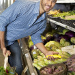 Portrait of a happy man shopping for vegetables in market — Stock Photo