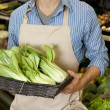 Stock Photo: Midsection of mholding basket of bok choy in supermarket
