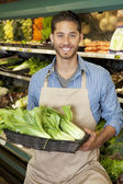 Portrait of a happy young salesperson with bok choy in market — Stock Photo