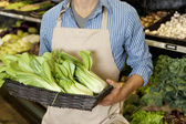 Midsection of man holding basket of bok choy in supermarket — Stock Photo