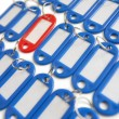 Close-up of red surrounded with blue key ring tags — Stock Photo