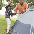 Stock Photo: Father And Son Pitch A Tent