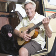 Senior Man With His Dog Playing Guitar In Campervan — Stock Photo
