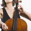 Stock Photo: Female Cellist