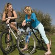 Women With Bicycles Communicating In Park — Stock Photo