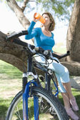 Female Bicyclist Drinking Water By Tree — Stockfoto