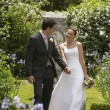 Newlywed Couple Walking In The Park — Stock Photo