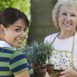 Grandmother And Granddaughter Holding Potted Plants — Stock Photo