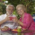 Senior Couple Toasting Glasses Of Drinks — Stock Photo #21948261