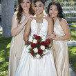 Quinceanera Standing With Female Friends - Stock Photo