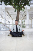 Businessman Meditating Under Tree — Stock Photo