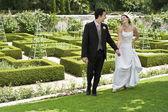 Novomanželský pár v parku — Stock fotografie