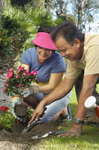 Couple Planting Flowers In Garden — Stock Photo