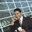 Stock fotografie: Businessman Using Mobile Phone