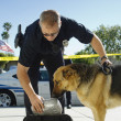 Stock Photo: Police Dog Sniffing Bag