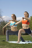 Women Performing Yoga Exercises In Park — Stock Photo