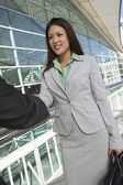Businesswoman Greeting Male Colleague — Stock Photo