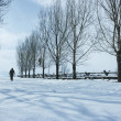 Person Walking In Snow — Lizenzfreies Foto