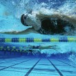 Foto Stock: Female Swimmers Swimming