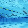 Swimmers Racing In Pool — Stock Photo