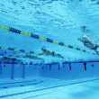 Swimmers Racing In Pool — Stok fotoğraf