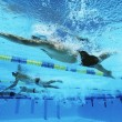 Stockfoto: Swimmers Swimming Together In Line During Race