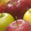 Fresh Multicolored Apples - Stock Photo