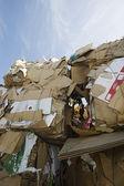 在垃圾场的纸板箱 — 图库照片
